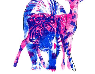 """Tigre"" - Zine"