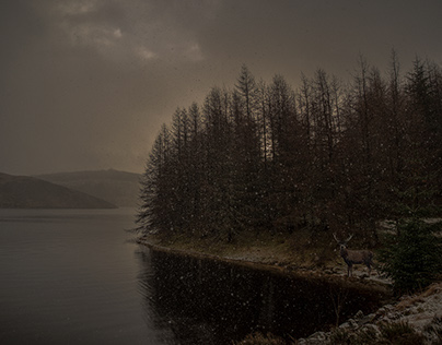 Loch in the Snow