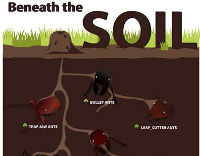 Beneath the soil