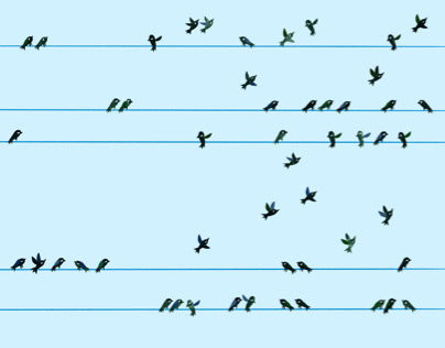 Birds (from Ensemble children book)