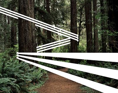 Digital Imaging (Exploration)