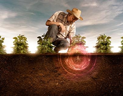 Agro - Proteção de raizes