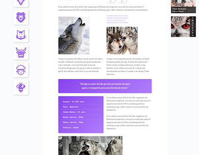 Projeto WildBeast - Projeto de Estudo
