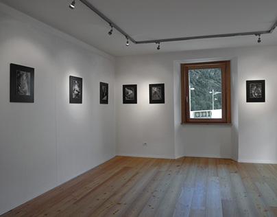 Valmalenco - Forme e presenze (exhibition)