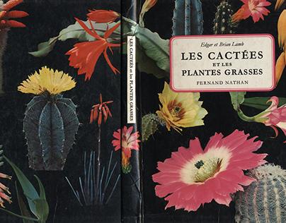 Les cactées et les plantes grasses (selection)