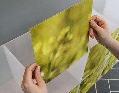 Vejle Løve Apotek - Window decoration concept