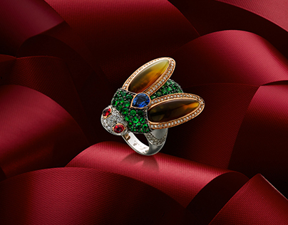 Assignment of Jewelry Photography