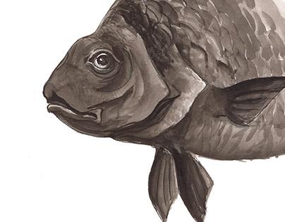 Fish prints for handbags