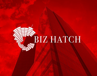 BIZ HATCH: Logo Design and Cards