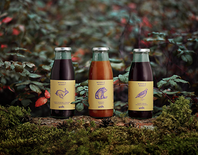 Nordic Berry | Branding&Packaging design
