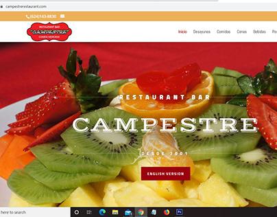 Diseño de sitio web, Restaurant Bar Campestre