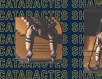 Cataractes Shawinigan - Campagne 2015-2016