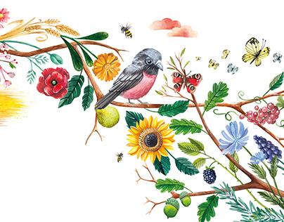 Barvy v přírodě - book illustration
