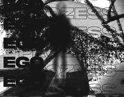 """egoprozess"" a creative experiment"