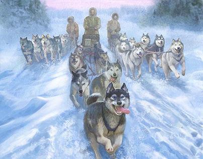 Dog sledding. The race of mercy.