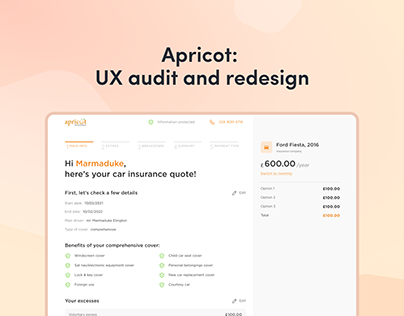 UX audit for the insurance company