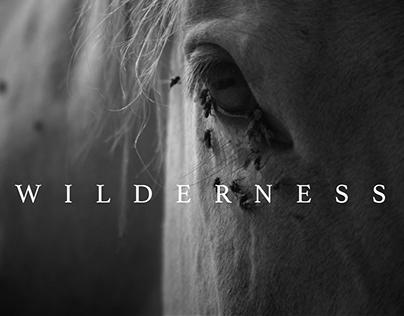 Wilderness (Short Film)