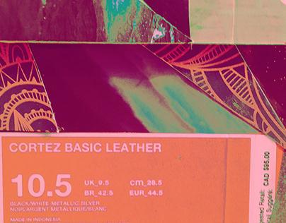 Nike Cortez Shoebox (Case Study)