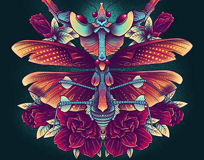 Fantasy x Entomology