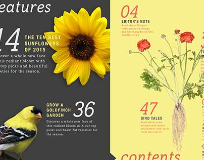Birds & Blooms - Magazine Redesign