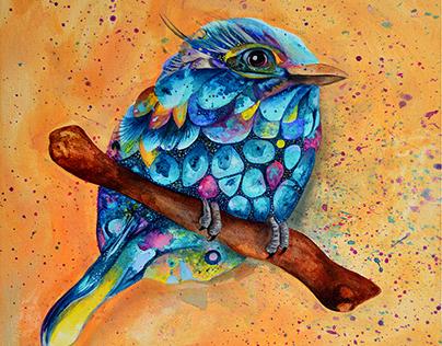 Birds. Aves. Oiseaux.
