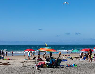 La Jolla, CA: La Jolla Shores