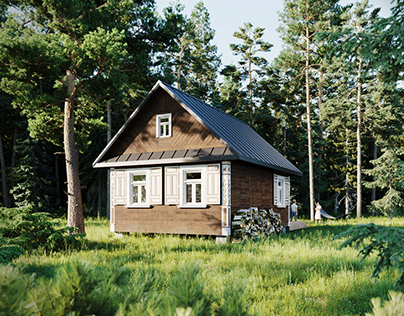 CGI Cabin in the Forest