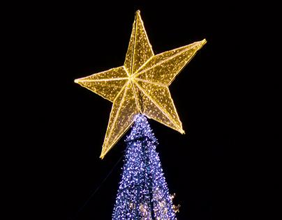 Diseño Navidad Bogotá 2016