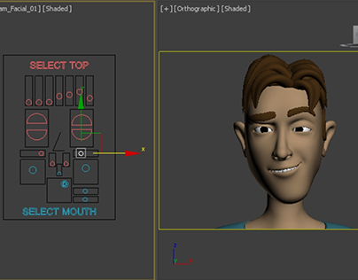 3D Character Rigging - Thalles Face