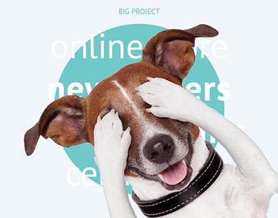 Online toys store + Newsletter + Brochure + SMM + Flyer