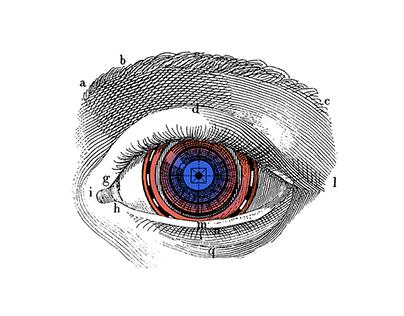 Distopías - Collage