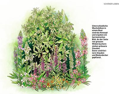 Naturgarten editorial