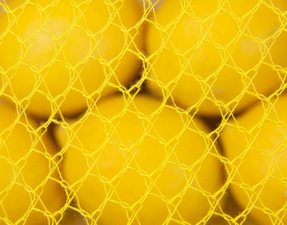 photography for a net maker