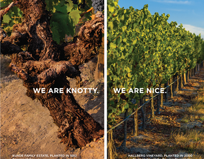 'We are Sonoma County' Brand Campaign