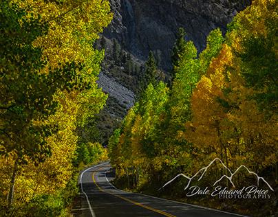 Fall In The Sierra Nevada
