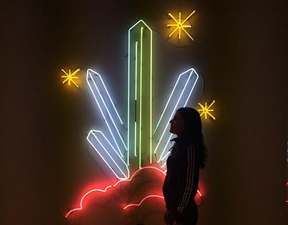 Neon Healing Crystals