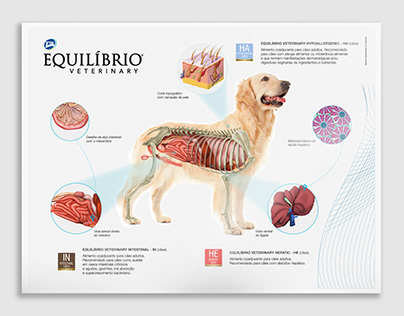 Physiological Poster - Dog | Total Alimentos