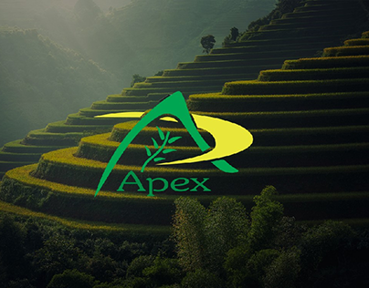 Apex Tea Packaging