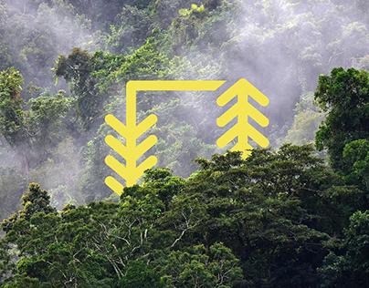 Selva lab — Forest ecology & global change