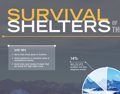 Survival Shelters Infographic