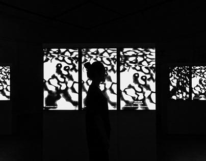 深夜博物館 Midnight Museum 台藝視傳109th畢業展