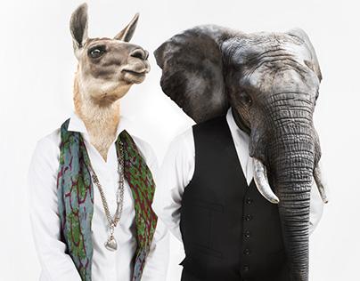Fairly Painless Advertising - Animal Portraits