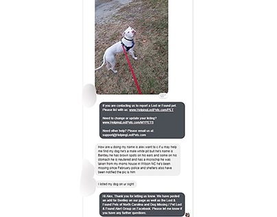 Customer Service Example for Lost Dogs North Carolina