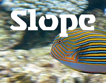 Typedesign – Slope Sans and Slope Slab