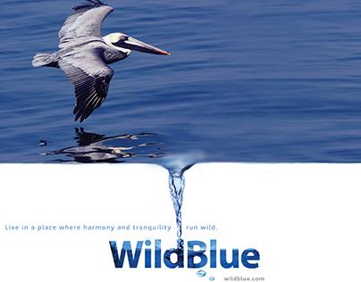 WildBlue