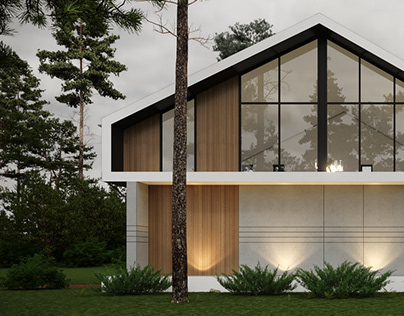 Triangle Barn house project