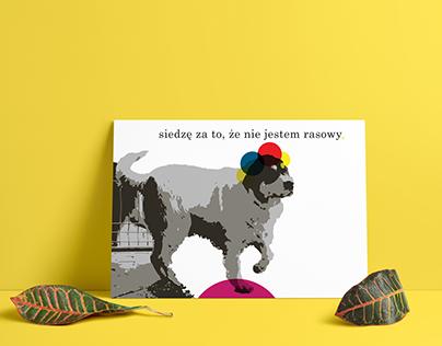 poster of homeless dog