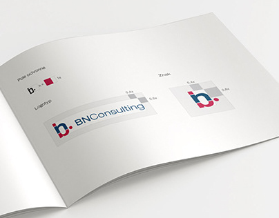 BN Consulting