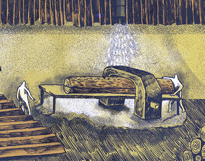 Illustrating a Sawmill's Timber Story
