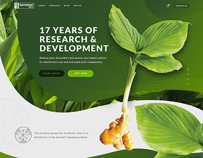 Website Design — Turmeron Joint